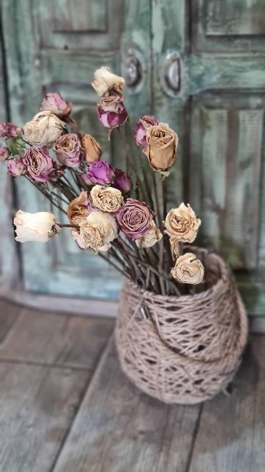 rosas secas flowershop